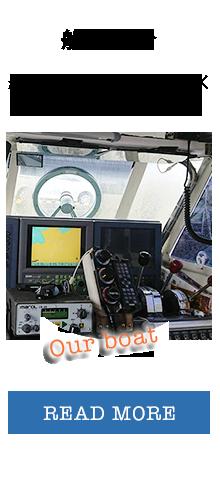boat_bnr